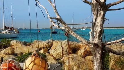Formentera La Sabina with dry tree hanging fishermen nets