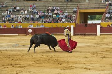torero en acción