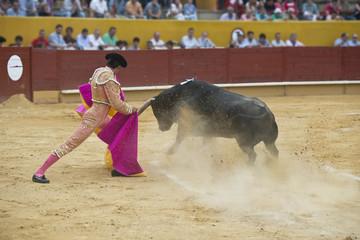 Torero toreando en una corrida típica española.