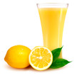 Ripe orange with leaves and glass with juice. Vector