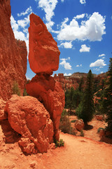 Colorful rocks in Bryce Canyon