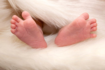newborn baby feet in artificial white fur