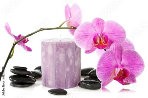 Fototapeten,orchidee,blume,kerze,natur