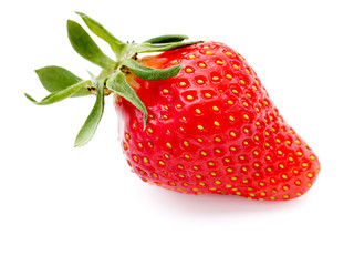 rote Erdbeere