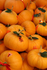 Chinese Pumpkins