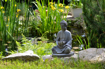 Garten Teich Iris  Buddha