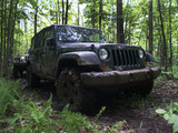 4wd en forêt sur chemin de boue