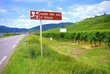 Route des vins d'Alsace.