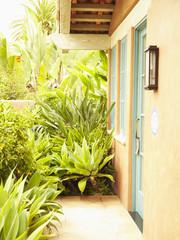 Door and windows of cottage