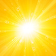 shiny sun summer background