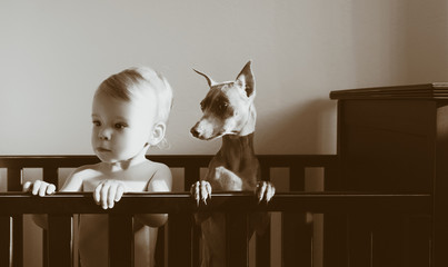 Caucasian boy standing in crib with puppy