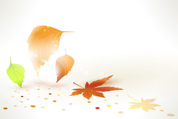 Abstract Autumn leaves vector background