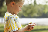 Caucasian boy looking at small frog