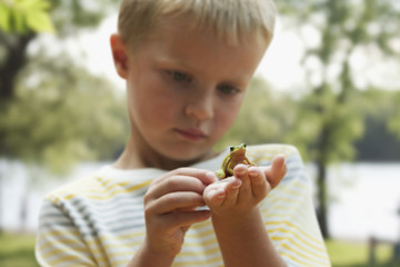 Caucasian boy looking at small frog
