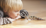 Caucasian boy looking at lizard