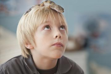 Caucasian boy with lizard on his head