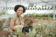 African American worker tending to plants in greenhouse