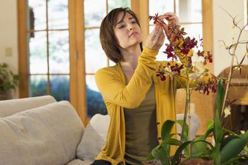 Hispanic woman arranging flowers in living room
