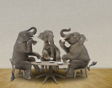 Elephants having tea party
