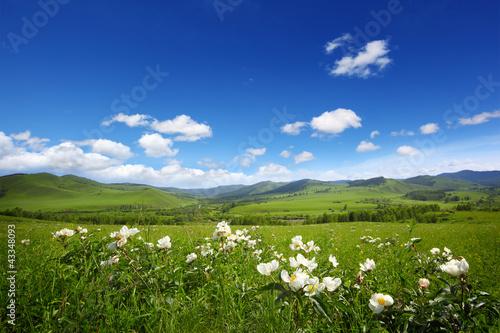 Fototapeten,landschaft,berg,terrain,ackerbau