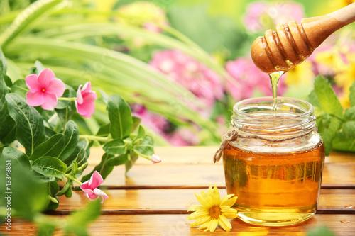 Honey - 43348851