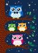 family owl portrait