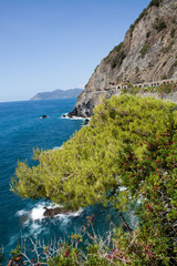 Cinque Terre - road of love.  Liguria, Italy.