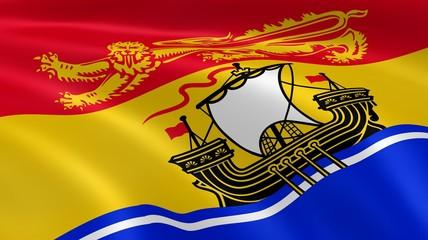 New Brunswicker flag in the wind