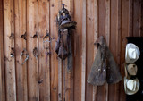 Bridles, saddle, chaps and cowboy hats hanging on wooden wall
