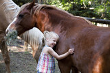 Caucasian girl petting horse in corral