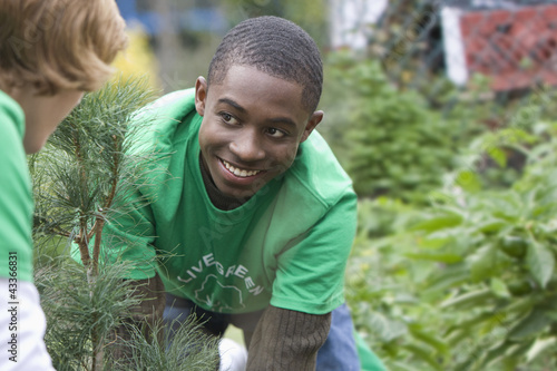 Volunteers planting a tree together
