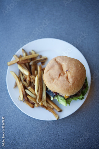 Cheeseburger and french fries