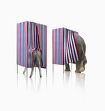 Donkey and elephant voting in voting booths