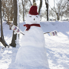 Snowman in hat, gloves and scarf