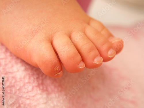 Closeup of baby feet, isolated towards pink