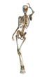 skeleton retro pin up 2