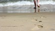 Barefoot feet walking in surf on sand coast.