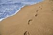 canvas print picture - Orme di un uomo che passeggia sulla spiaggia in riva al mare