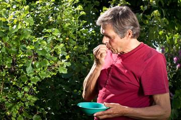 Aktiver Mann nascht in seinem Garten Jostabeeren