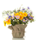 beautiful bouquet of bright  wildflowers in flowerpot, isolated