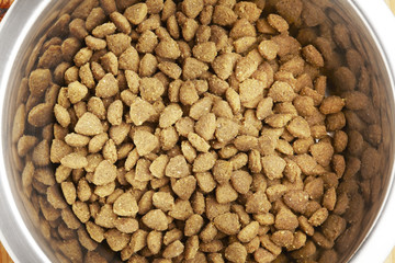 Kibble dog or cat food in bowl