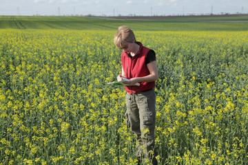 Agronomist examine rapeseed field