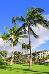 View of a luxury hotel, Kaanapali, Maui, Hawaii