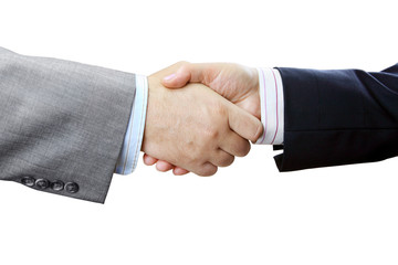 Businessmen and Businesswoman Shaking Hands on White Background
