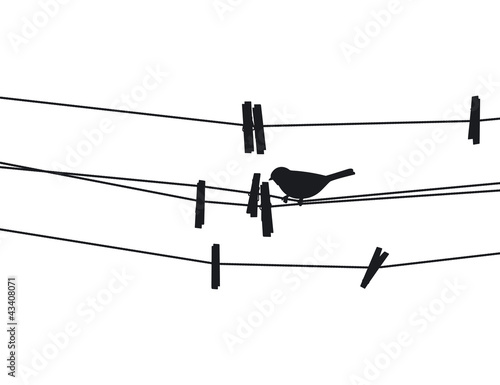 Bird sits on a rope next to the clothespins. Vector illustration