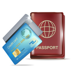passport icon and credit cards