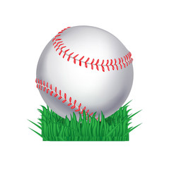 baseball ball in grass