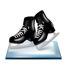 pair of black skates on ice