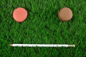 macaroon face on grass