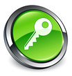 Key icon 3D green button